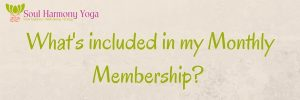 What's included in my Monthly Membership-